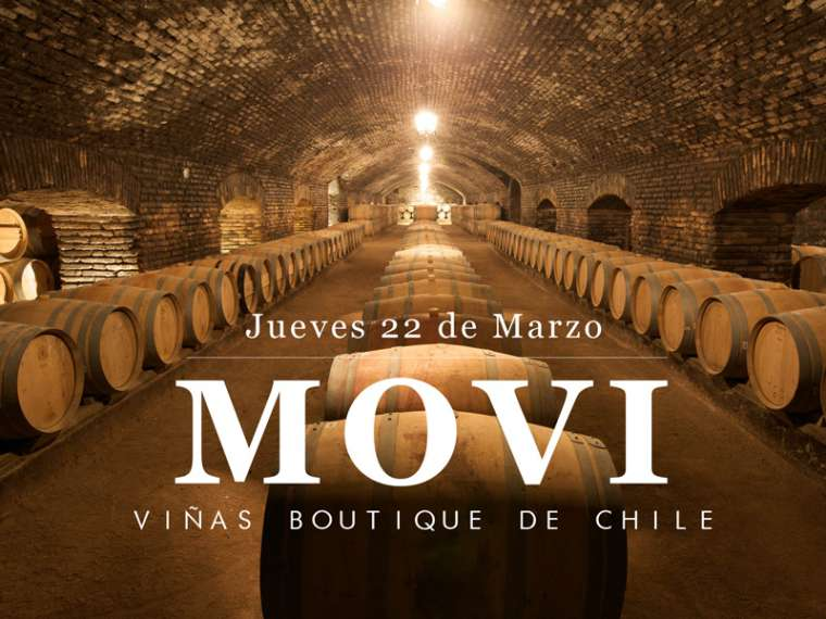 MOVI | Viñas Boutique de Chile en Boutique 90!
