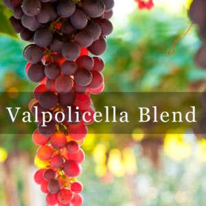 Valpolicella Blend