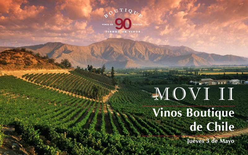 Movi II – Vinos Boutique De Chile